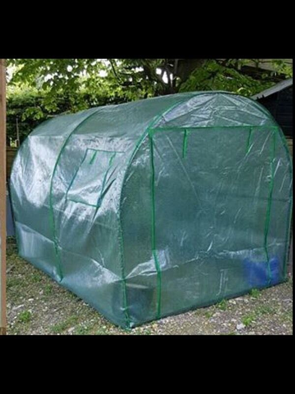 Polytunnel | in Lewes, East Sussex | Gumtree