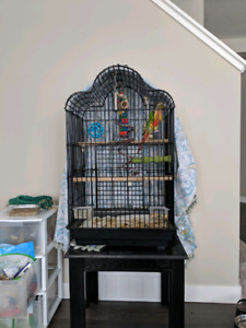 GCC with cage
