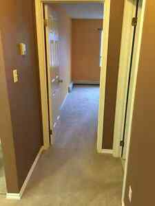 2 Bedroom, 2 Bathroom, 2 Parking Stalls - Downtown Edmonton Edmonton Area image 7
