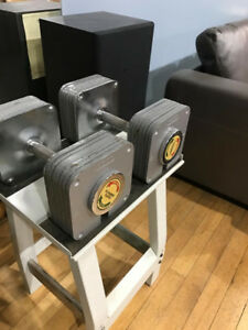 hoist adjustable dumbbells with stand (75lbs each)
