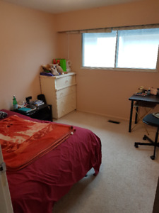 Close to Langara College-110ft2 available Feb 12th