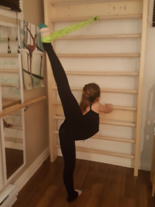 Espalier BARRE STALL bois franc 3x7pi gym fitness yoga danse NEW