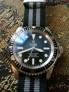 Tiger Concept Automatic watch