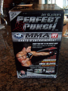 Jay Glazer's Perfect Punch MMA Resistance Training System