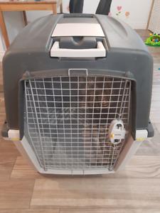 Cage de transport pour gros chien - norme avion IATA