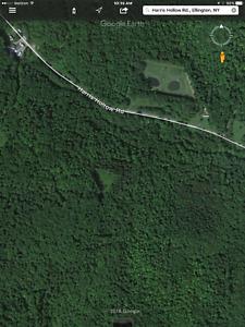 67 acres hunting/ tree farm 60 miles south of Buffalo