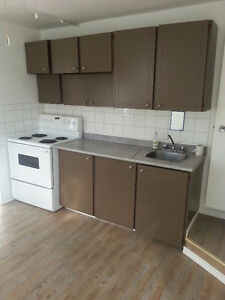 Nice 1-Bedroom Apartment in the Heart of Timmins