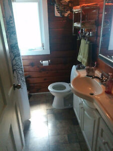 Room for rent, 25 mins from Fleming college Kawartha Lakes Peterborough Area image 2