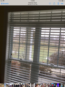 Faux wooden 2in. Horizontal blinds