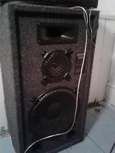 2 audio tech pro poly speakers carpet 250 watts