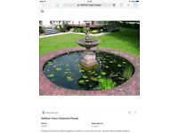 Pond covers