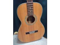 Aria handcrafted parlour size acoustic