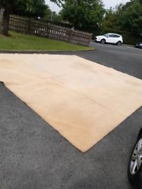 Carpet , garage mat , hall .cheap