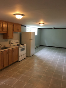 Spacious 2 bedroom apartment for rent - available July 1st