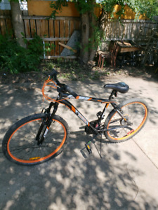Moving sale! Bicycles,spin bike,L couch, computer,gym