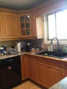 Cabinet Painter Kitchener / Waterloo Kitchener Area image 5