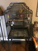 meyers parrot and cage