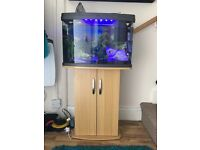 65 L tropical aquarium and cabinet