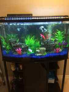 46 Gallon Bow Front Aquarium and stand