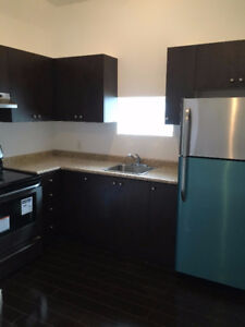 Brand New 2 Bedroom Apartment For Rent - Palmerston / TG MINTO