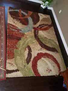 Modern Area Rug For Sale Kitchener / Waterloo Kitchener Area image 2