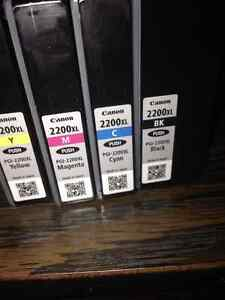 Canon 2200xl ink