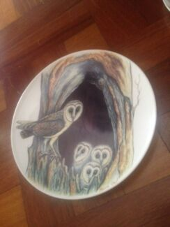 Michael Morcombe plate, barn owls  Brisbane Region Preview