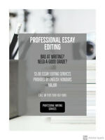 Professional Essay Writing & Editing Services
