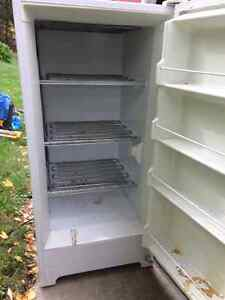 Used Stand up freezer