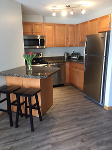 Newly renovated 2 bed 2 bath downtown condo now available!
