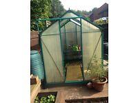 8x6 Greenhouse - FREE