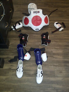 sparring gear - complete outfit for woman or older boy Kitchener / Waterloo Kitchener Area image 1