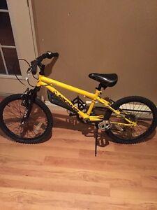 Boys 6 speed mountain bike