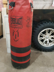 Free Heavy  bag. Just want it gone