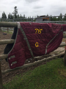 Horse Blankets - new and used