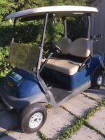 Voiturette electrique cart de golf