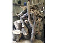 Firewood - Logs