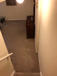Studio basement available for 12 days immediately near GOStation