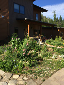 Summer sublet Nelson Cohousing