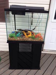 Complete 55 Gal Aquarium Setup