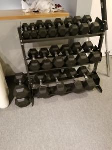 Exerciseur, entrainement equipement, gym,halteres et dumbell