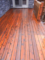 Reliable Local Contractor: Painting and Staining