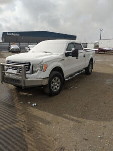 Ford F150 XLT for Sale
