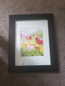 Flower Picture with Black Frame