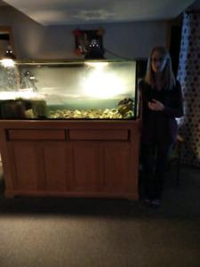 150 gallon tank / aquarium / terrarium