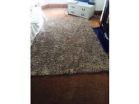 Shaggy style beige rug