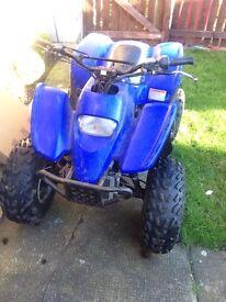 Quadzilla proshark 100cc 2 stroke quad bike