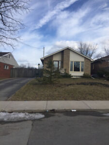 Beautiful 3 BR West Mountain Bungalow Available