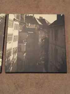 3 canvas pictures Prince George British Columbia image 3