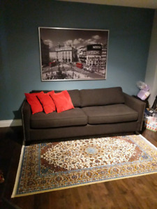 Urban Barn Sofabed Couch